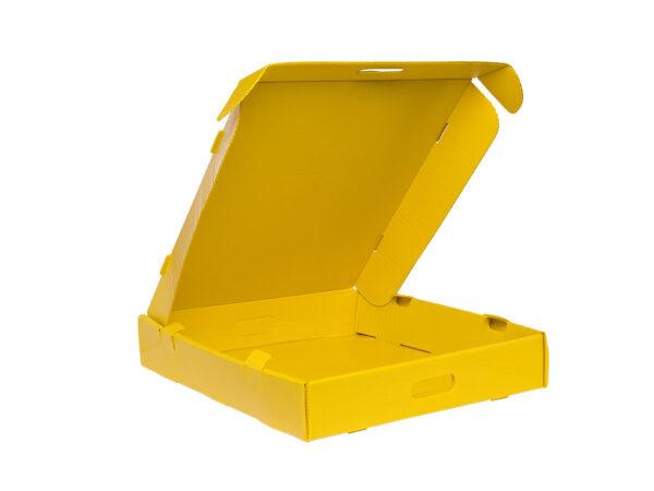 Cellular polypropylene FEFCO box