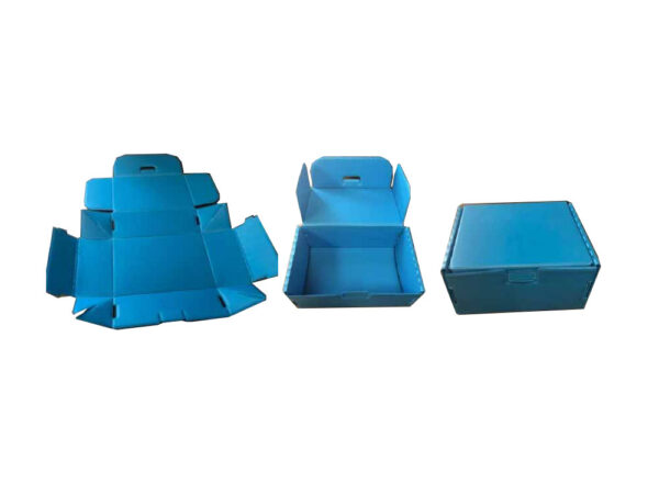 Cutie FEFCO din plastic alveolar detaliu asamblare